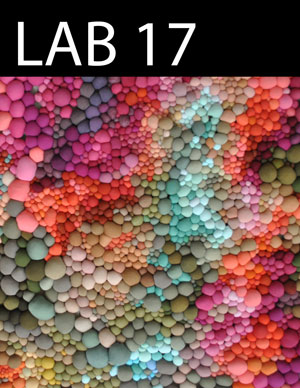 LAB issue 17 cover